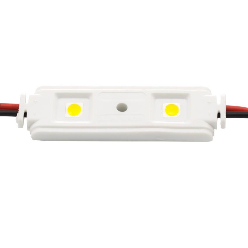 Catena di 20 Moduli Lineari da 2 LED SMD5050 12V 0.48W IP65