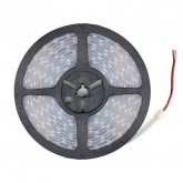 5m LED Strip 12V DC, SMD5050, 120LED/m, IP67