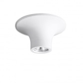 Topaz Ceiling Light