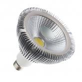 PAR38 12W COB LED Lamp